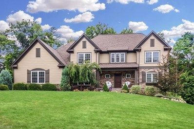 8088 Butler Hill Dr, Concord, OH 44077 - #: 4034079