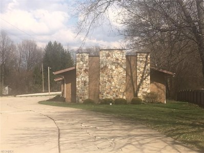 927 N Portage Path, Akron, OH 44303 - #: 4034791