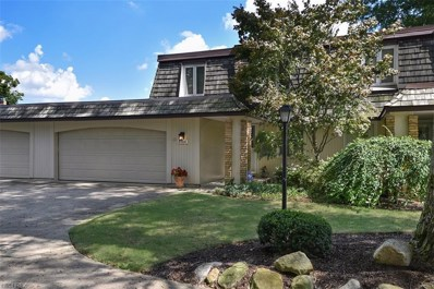 8564 Tanglewood Trl, Chagrin Falls, OH 44023 - #: 4035016