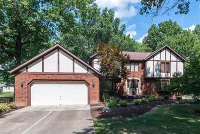 5009 Maple Leaf Ln, Independence, OH 44131 - #: 4035209