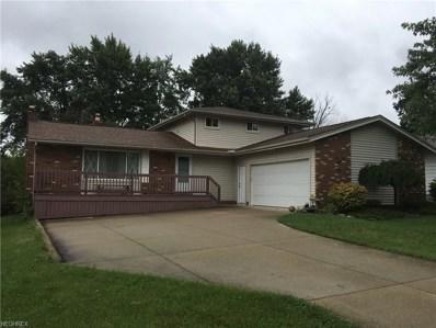 4697 Hickory Ridge Ave, Brunswick, OH 44212 - #: 4035956