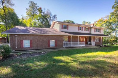 4565 S Main St, Akron, OH 44319 - #: 4036154
