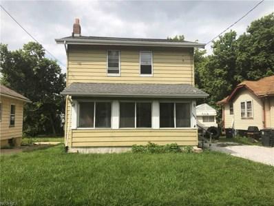 1057 Joy Ave, Akron, OH 44306 - #: 4036335
