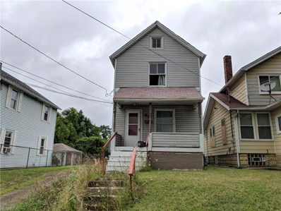 82 Tremble Ave, Campbell, OH 44405 - #: 4036511