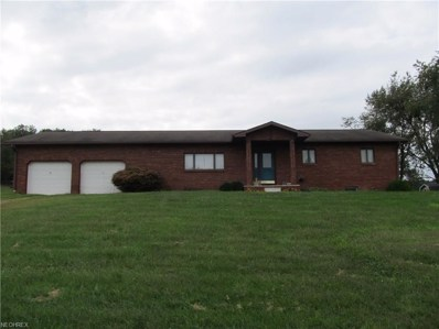 7205 State Route 179, Lakeville, OH 44638 - #: 4036933