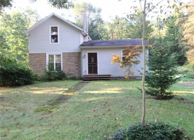 5784 Stoneville Rd, Windsor, OH 44099 - #: 4037040