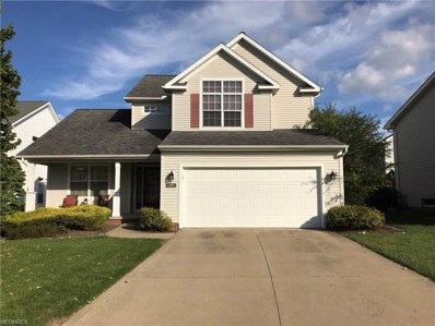 1387 Apple Valley Ct, Broadview Heights, OH 44147 - #: 4037745