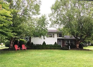 1445 Furnace St, Mineral Ridge, OH 44440 - #: 4038126