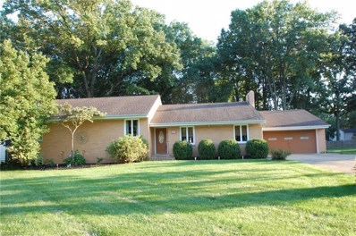 245 Moreland Dr, Canfield, OH 44406 - #: 4038165