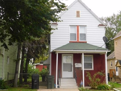 114 Irondale St, Elyria, OH 44035 - #: 4038293
