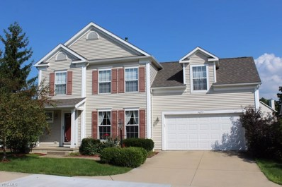 5073 Lake Point Ct, Stow, OH 44224 - #: 4039003