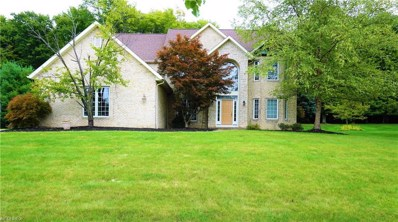 9435 Woodchip Ln, Broadview Heights, OH 44147 - #: 4039749