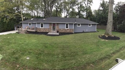 5423 Pinehill Dr, Mentor-on-the-Lake, OH 44060 - #: 4039808