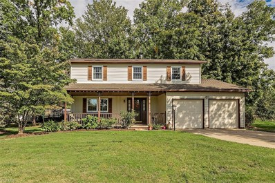 1139 Riverview Dr, Macedonia, OH 44056 - #: 4039889