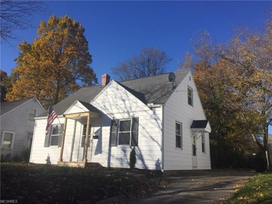 828 Caddo Ave, Akron, OH 44305 - #: 4041090