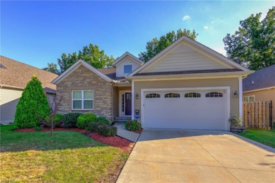 34720 Willow Creek Pl, Willoughby, OH 44094 - #: 4041136