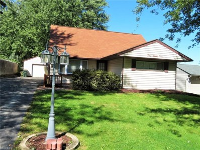 374 Rosemont Ave, Youngstown, OH 44515 - #: 4041155