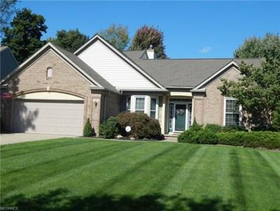 9195 Davis Way, Twinsburg, OH 44087 - #: 4041285