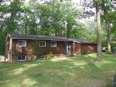 10484 Jerry Coe Ln, Strongsville, OH 44149 - #: 4041853