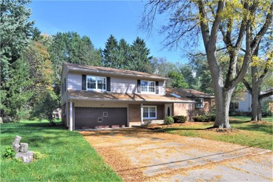 2995 Stanley Rd, Fairlawn, OH 44333 - #: 4041984
