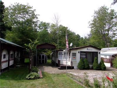 6688 Leon Rd, Andover, OH 44003 - #: 4042506