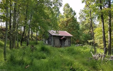 Campbell, Other, WV 26170 - #: 4043671