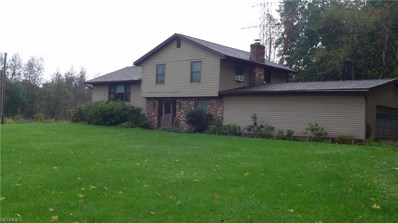 4525 State Route 43, Kent, OH 44240 - #: 4043733