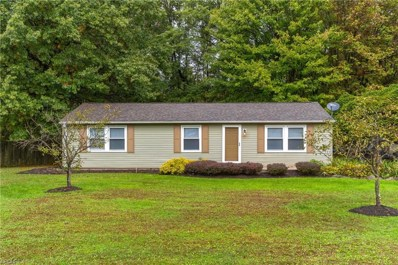 40 Leffingwell Dr, Orwell, OH 44076 - #: 4043849