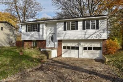 1319 Northfield Dr, Mineral Ridge, OH 44440 - #: 4045243