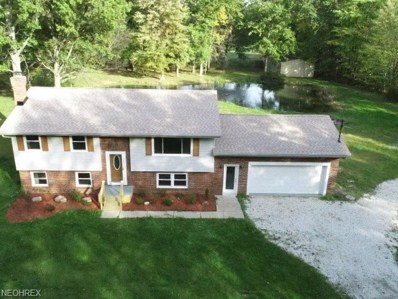2433 Wood Lenhart Rd, Leavittsburg, OH 44430 - #: 4045343