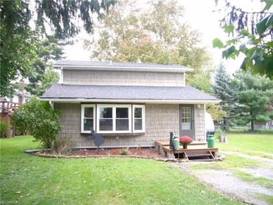 110 Forest Ave, Spencer, OH 44275 - #: 4047252