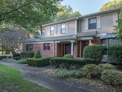 194 Talsman Dr UNIT A, Canfield, OH 44406 - #: 4047738