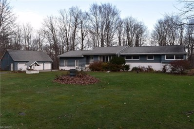 11919 Storybook Ln, Chesterland, OH 44026 - #: 4047756