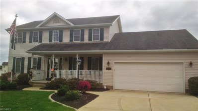 4237 E Calla Rd, New Middletown, OH 44442 - #: 4047946