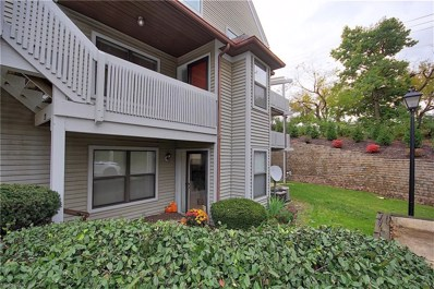 23 Forest Cove Dr UNIT 14, Akron, OH 44319 - #: 4048092