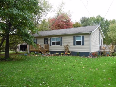 6803 Slater Road, Andover, OH 44003 - #: 4048247