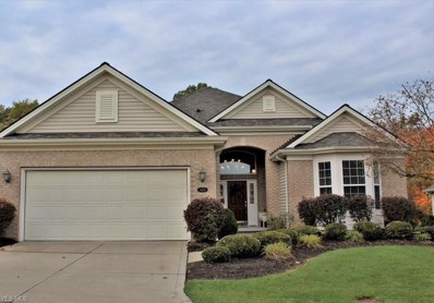 4406 Forest Lake Ct, Stow, OH 44224 - #: 4048665