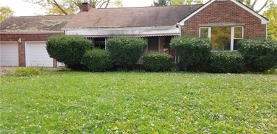 3619 Dover Rd, Youngstown, OH 44511 - #: 4050191