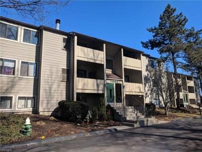 1680 Cedarwood Ln UNIT 343, Westlake, OH 44145 - #: 4050631