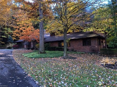 8262 Whitney Ln, Concord, OH 44077 - #: 4050683