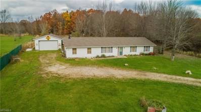 2302 State Route 14, Deerfield, OH 44411 - #: 4050814