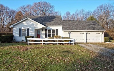 4430 Lane Rd, Perry, OH 44081 - #: 4051223