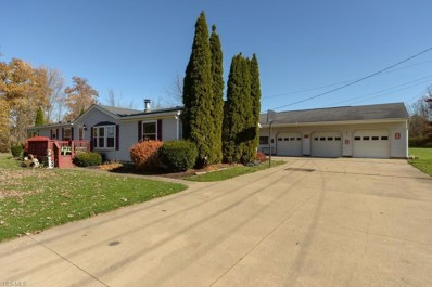 10037 Homestead Rd, Wadsworth, OH 44281 - #: 4051249