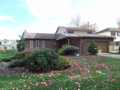 6815 Paula Dr, Middleburg Heights, OH 44130 - #: 4051678