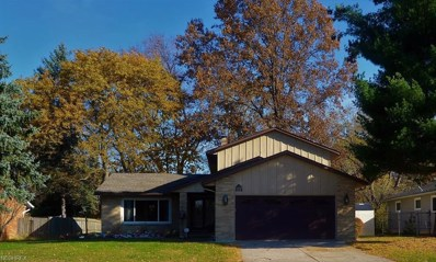 505 Catlin Dr, Richmond Heights, OH 44143 - #: 4052274