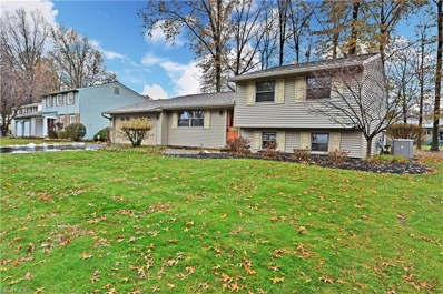 386 Stahl Ave, Cortland, OH 44410 - #: 4052667
