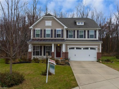 9011 Moss Pointe Cir, Olmsted Township, OH 44138 - #: 4052749