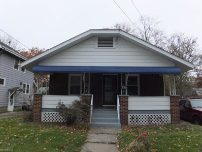 336 Morningview Ave, Akron, OH 44305 - #: 4053097