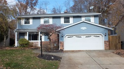 7925 Linden St, Mentor-on-the-Lake, OH 44060 - #: 4053146