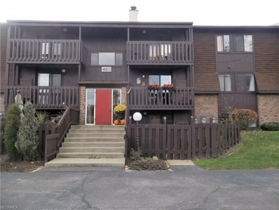4615 Oakhill Blvd UNIT 105, Lorain, OH 44053 - #: 4053261